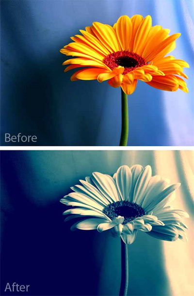 Photoshop-action-actions-to-enhance-your-photos