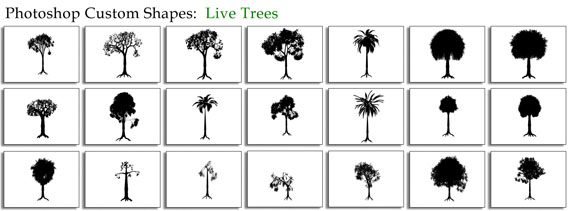 Live-trees-free-photoshop-custom-shapes
