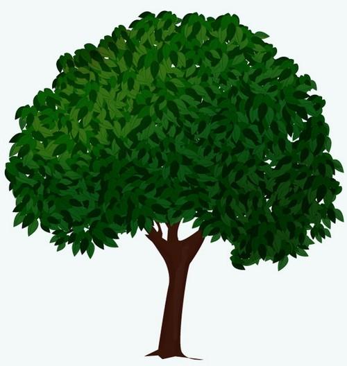 Выберите инструмент Pen Tool (P) и нарисуйте форму листа.Залейте форму зеленым цветом и сделайте контур более...