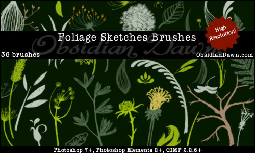 Flower_Sketches_Brushes_by_redheadstock