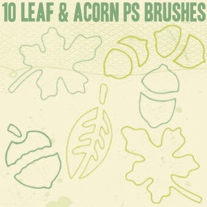 Leaf_and_Acorn_Outline_Brushes_by_chokingonstatic