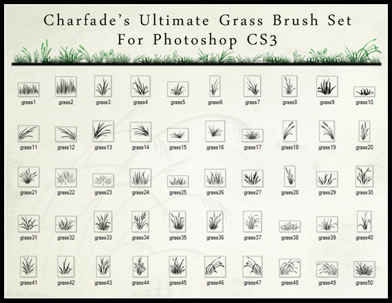 The_Ultimate_Grass_Brush_Set_by_charfade