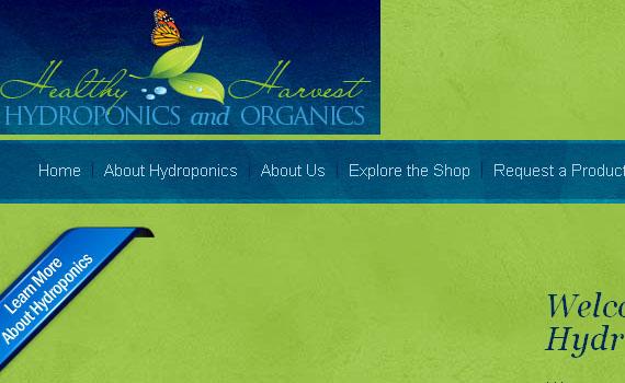 Eco_friendly_website23