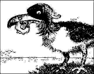 Giant bird-opillusions
