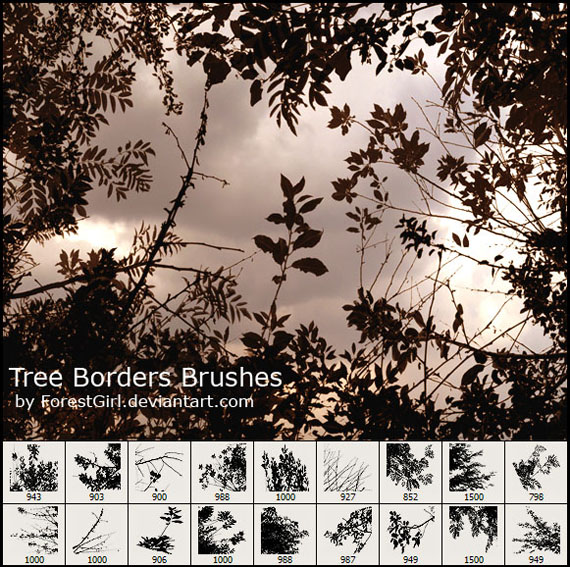 Tree_borders_brushes_by_forestgirl-d2y7gvj
