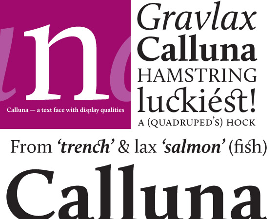 calluna-free-high-quality-font-web-design