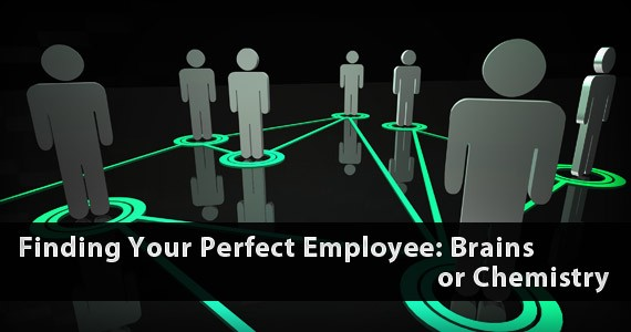 Finding Your Perfect Employee: Brains or Chemistry
