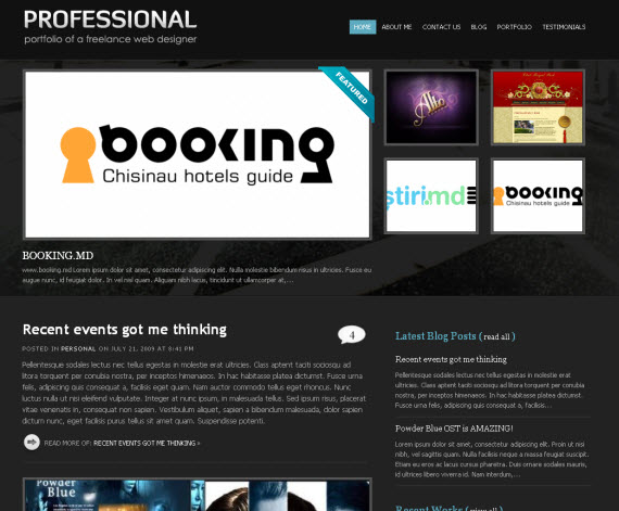Professional-commercial-wordpress-portfolio-showcase-theme