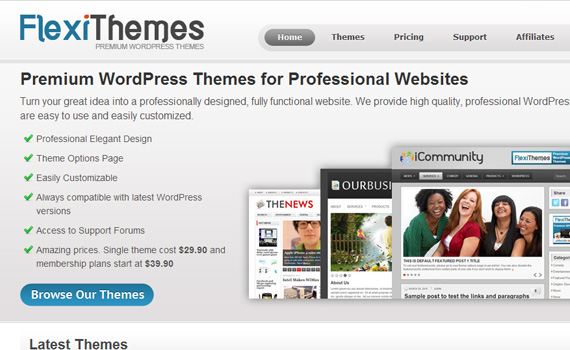 Flexithemes-marketplaces-buy-sell-wordpress-themes