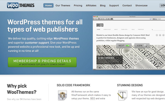 20+ Best Marketplaces Where You Can Buy And Sell High Quality WordPress Themes