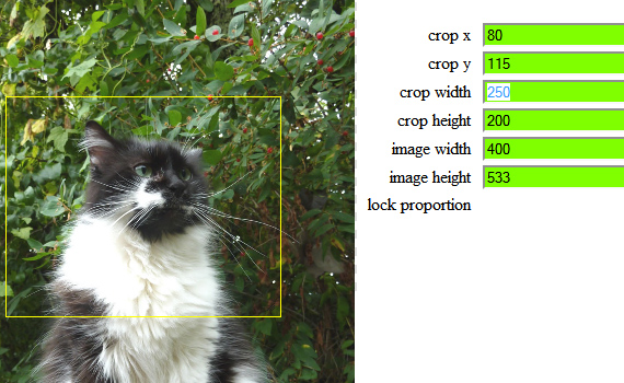 Crop-resize-new-cool-jquery-plugins-2011