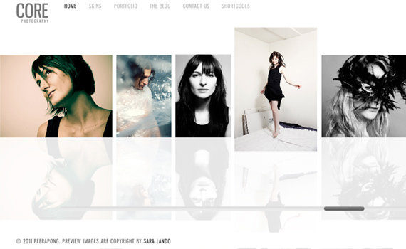 Core-premium-portfolio-wordpress-themes