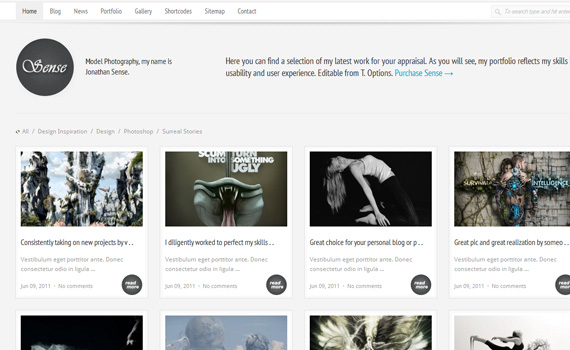 Sense-premium-portfolio-wordpress-themes