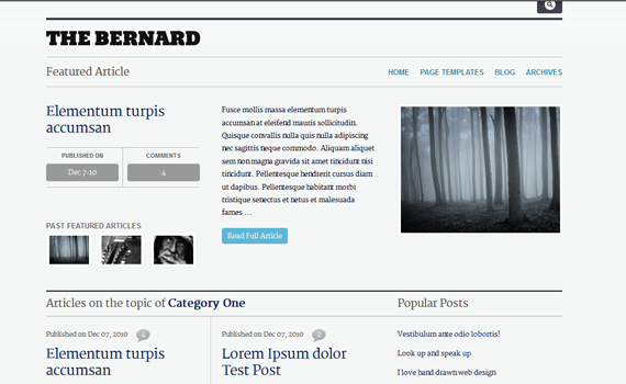 Bernard-premium-magazine-newsletter-wordpress-themes