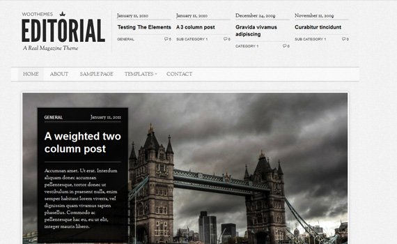Editorial--premium-magazine-newsletter-wordpress-themes