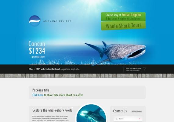 Bestviajes whale shark