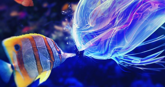 The Mimic পছন্দ না হলে টিউন ডিলিট গ্যারান্টি – মাথা নষ্ট করার মত ফুল HD ওয়ালপেপার