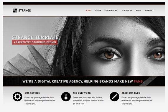 Strange-Hottest-Wordpress-Themes-Freelancers