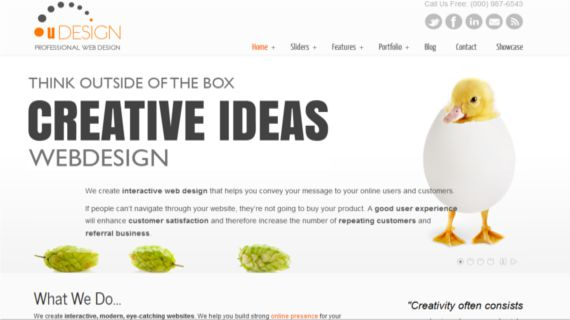 U-Design-Hottest-Wordpress-Themes-Freelancers