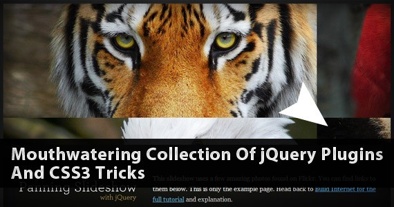 Mouthwatering Collection Of jQuery Plugins And CSS3 Tricks