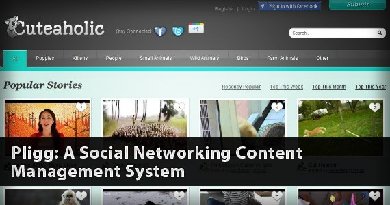 Pligg: A Social Networking Content Management System