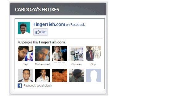 Cardoza-Facebook-Like-Box-Top-15-Most-Popular-Wordpress-Facebook-Plugins