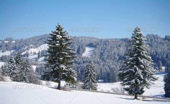 Landscape-christmas-winter-premium-backgrounds