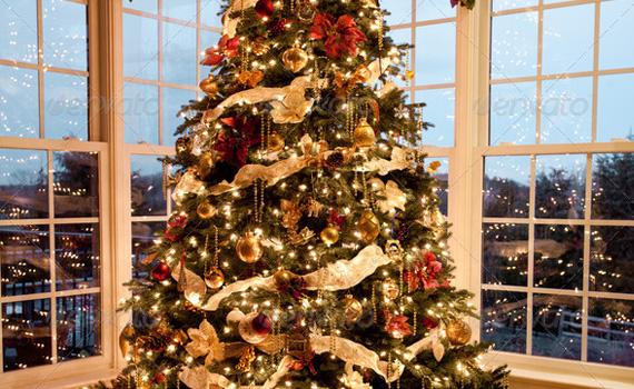 Tree-dusk-christmas-winter-premium-backgrounds