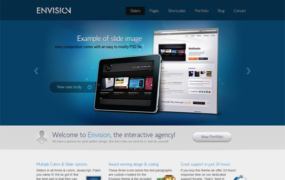 website-10-envision