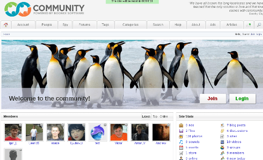 Best CMS for a dating site