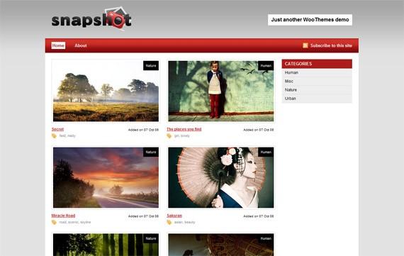 website-09-snapshot