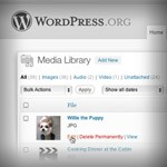 Humble Beginnings of WordPress and its Future