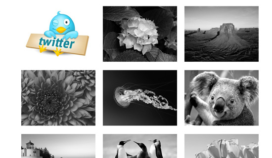 Bw-jquery-image-gallery-plugins