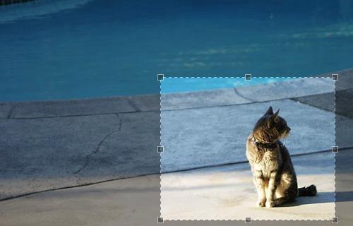 Jcrop-jquery-image-gallery-plugins