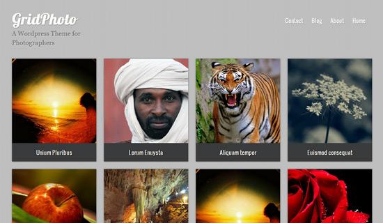 Gridphoto-free-wordpress-themes-2012