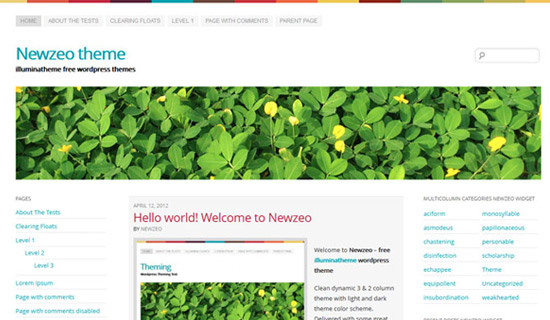 Newzeo-free-wordpress-themes-2012