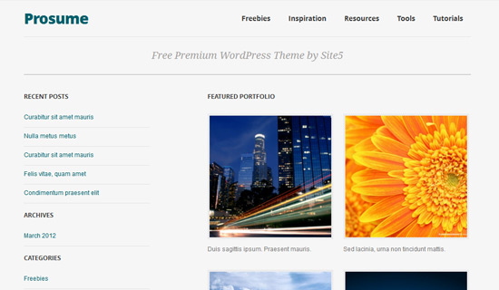 Prosume-free-wordpress-themes-2012