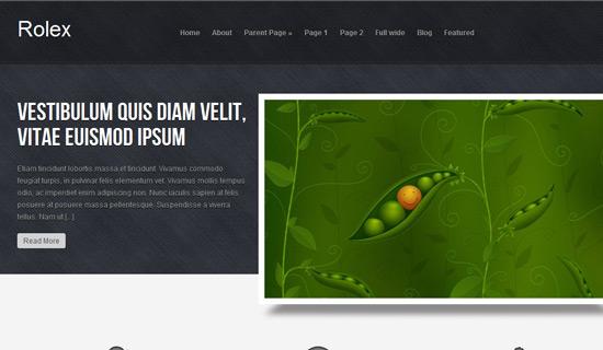 Rolex-free-wordpress-themes-2012