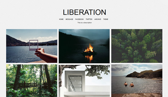 Liberation-free-tumblr-themes