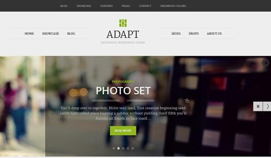 Adapt-premium-wordpress-themes-2012