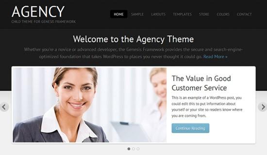 Agency-premium-wordpress-themes-2012