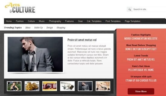 Artsculture-premium-wordpress-themes-2012