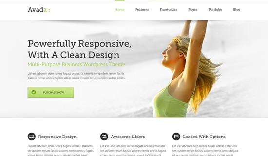 Avada-premium-wordpress-themes-2012