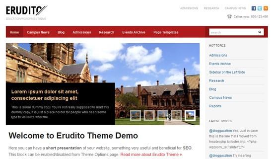 Erudito-premium-wordpress-themes-2012