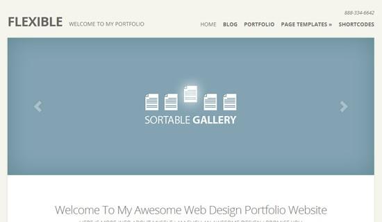 Flexible-premium-wordpress-themes-2012