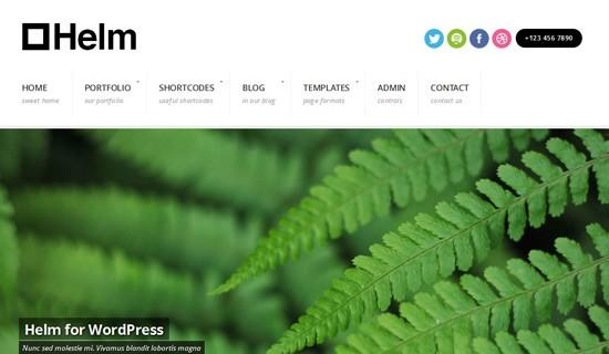 Helm-premium-wordpress-themes-2012