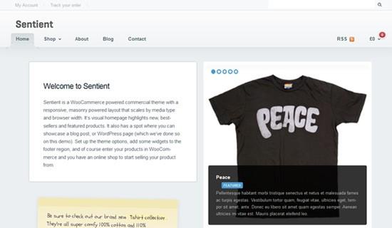 Sentient-premium-wordpress-themes-2012
