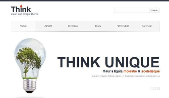 Think-premium-wordpress-themes-2012