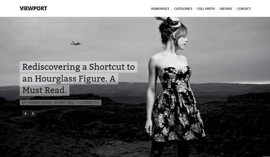 Viewport-premium-wordpress-themes-2012