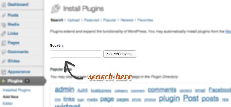 plugin-guide-search-1